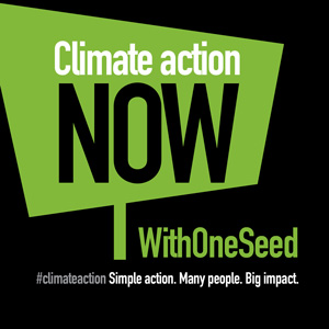climate-action-now